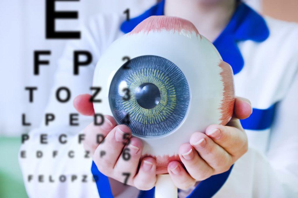 De bouw van een oog