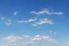 Mouches volantes, zwarte vlekjes die zichtbaar zijn als je naar de blauwe lucht kijkt